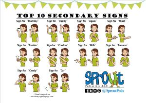 Secondary Signs Flyer